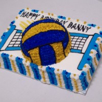 Volleyball Cake---3D