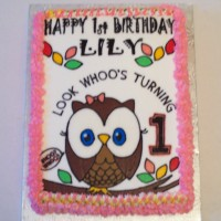 Owl 1st birthday cake!!
