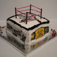 WWE Wrestling rink