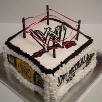 WWE WRESTLING RINK!!